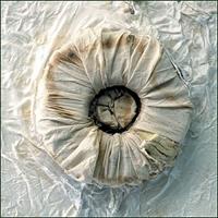 O.T. – Fallschirmstoff, Textilschnallen, Kabeldraht, 2002